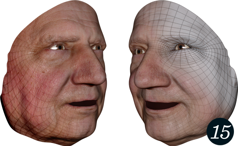In the Camera Facialis, 3-D face scans in dense correspondence to an animatable surface mesh are acquired.