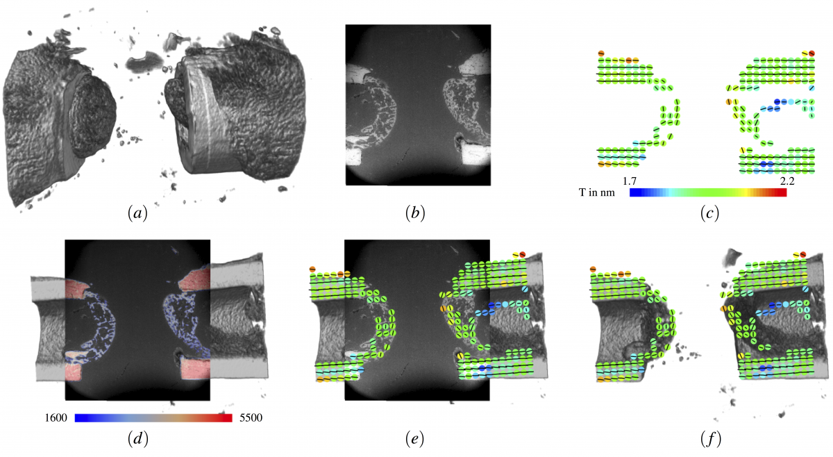 : Integration of information from small-angle X-ray scatterin