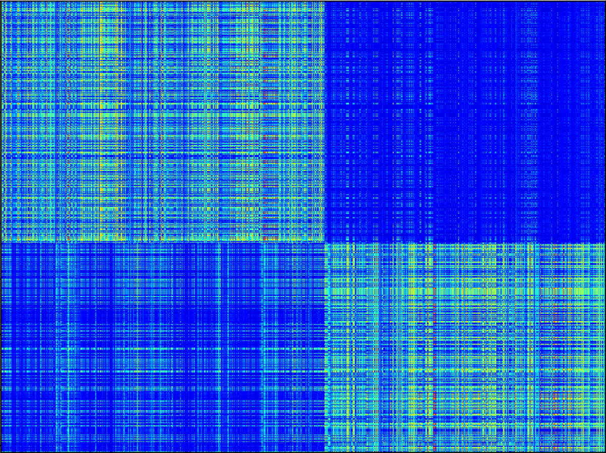 Connectivity matrix of 831 neurons.