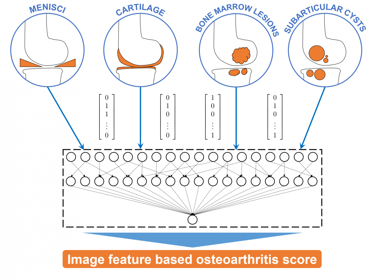 Combining image feature based measurements to an OA score